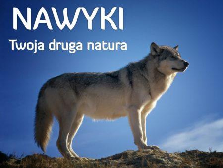 Andrzej Bernardyn NAWYKI DRUGA NATURA 1