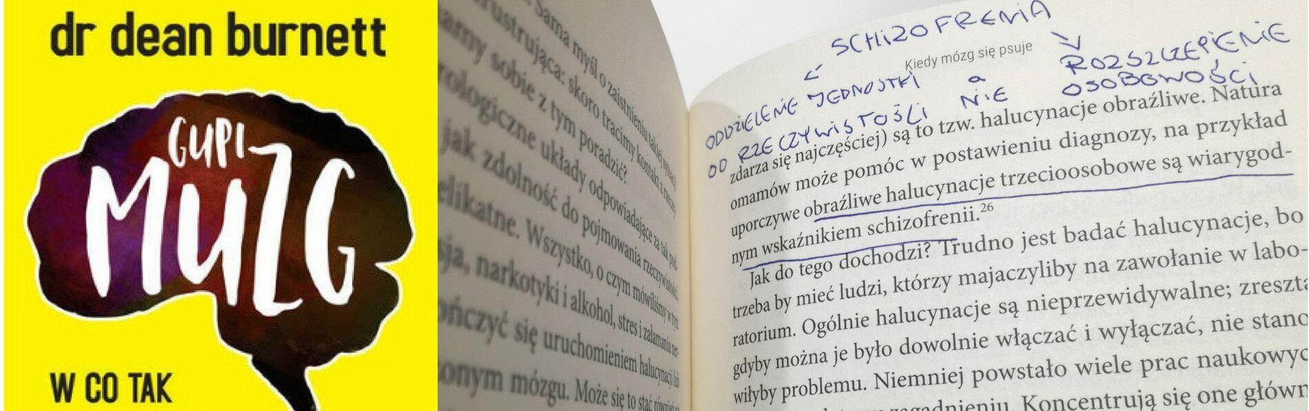 Recenzja Książki Gupi Muzg - Andrzej Bernardyn